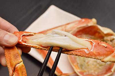crab06
