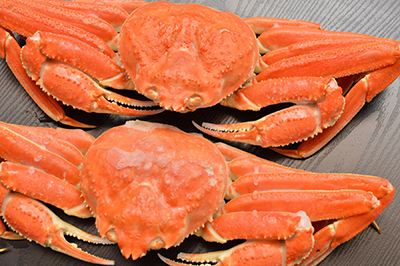 crab07